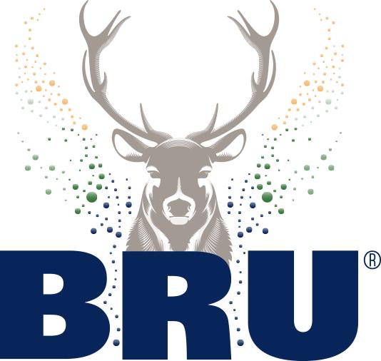 BRU_BUBBLES_PETILLANT_Cerf_Logo_PMS